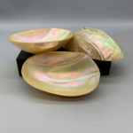 Mother of Pearl Dishes
